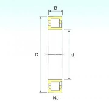 ISB NJ 2203 cylindrical roller bearings