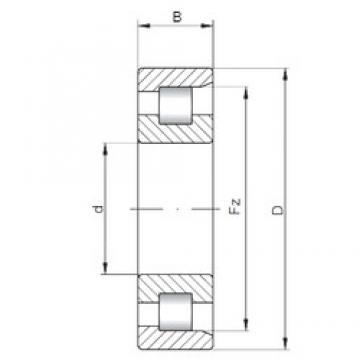 ISO NF18/500 cylindrical roller bearings