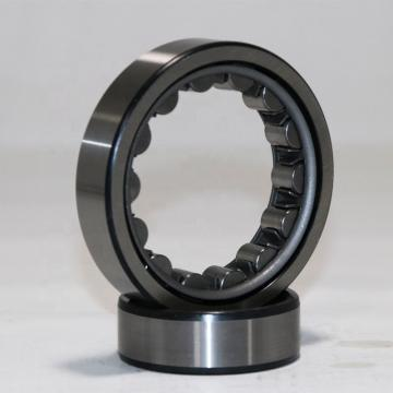 Toyana NP3030 cylindrical roller bearings