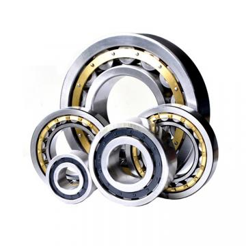 Toyana LM29748/10 tapered roller bearings