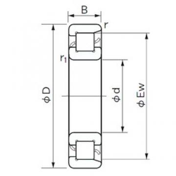 NACHI NF 228 cylindrical roller bearings