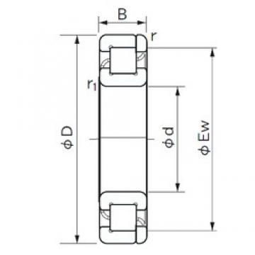 NACHI NP 416 cylindrical roller bearings