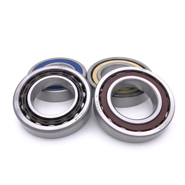 Toyana NF31/560 cylindrical roller bearings #1 image